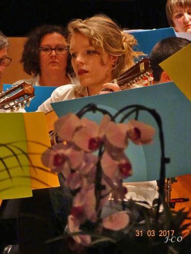 Concert-des-Mandolines-Remiremont-19